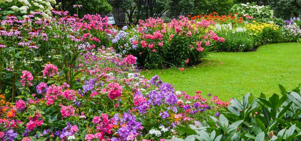 great-north-landscaping-garden-design