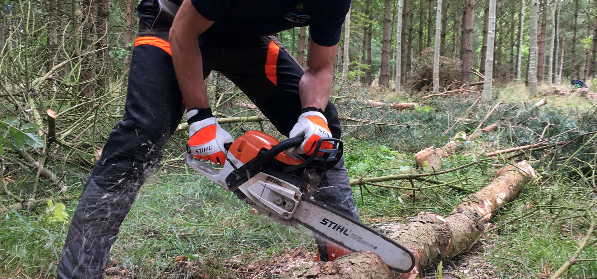 Greta North Landscaping Tree Surgery